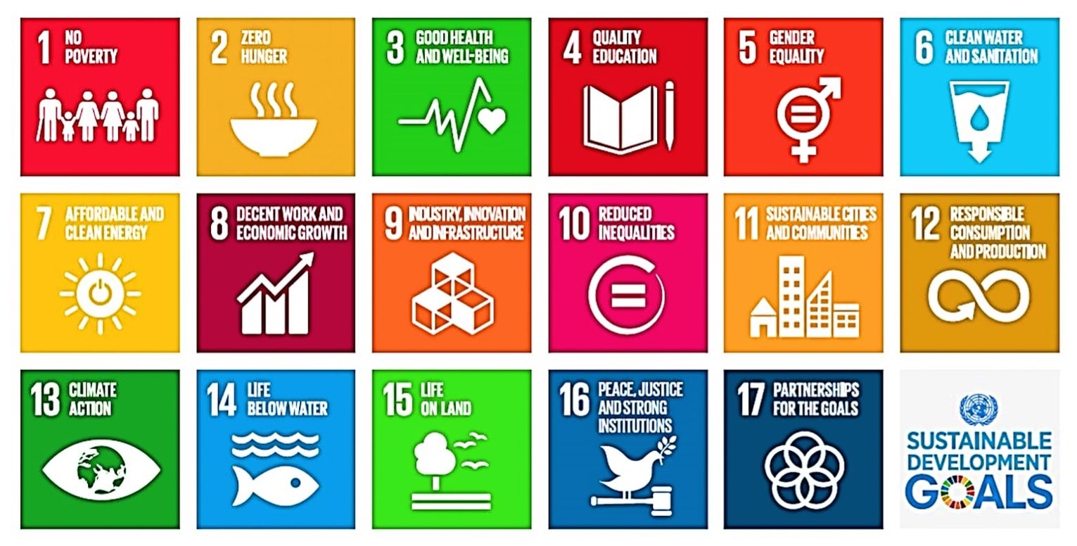 17 action areas to work towards by 2030.