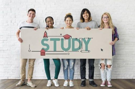 IMM Study